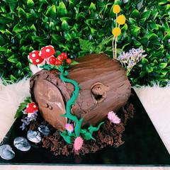 Fairy themed log 6 inch $170