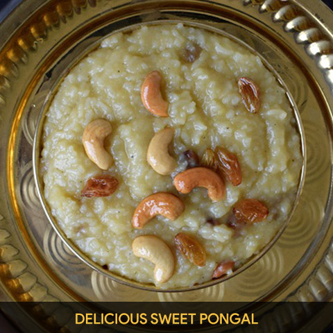 Delicious Sweet Pongal