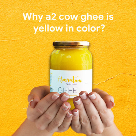 Why A2 cow ghee is yellow in color?