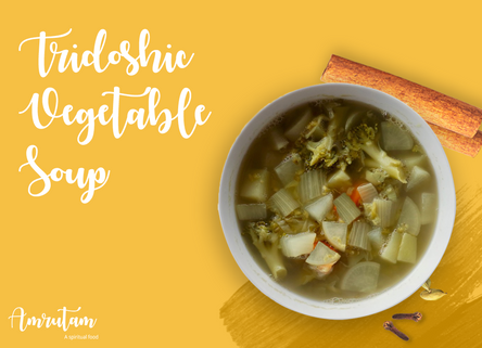 Tridoshic Vegetable Soup