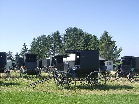 Amish buggies in wis.jpg