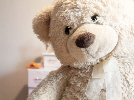 Lockdown Brings Teddy Bears To Life In NZ