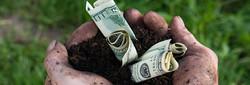 Monsanto-Secretly-Gave-Money-to-Farmer-Caught-Contaminating-Organic-Farms-with-GMOs