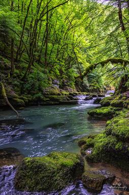 Aval barrage - Source de la Loue - Doubs