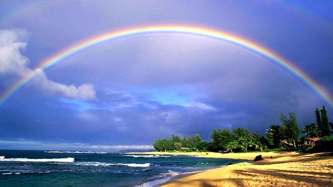 HIMIKO ORGANICS 虹の海