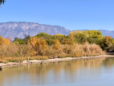 Albuquerque Leaps on Milken Institute Best Performing Cities Ranking