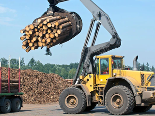 Lumber Prices will Fall Back to Pre-Pandemic Levels within a Year Amid Considerable Volatility
