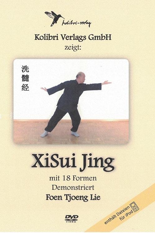 XiSui Jing