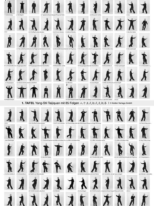 Poster Yang-Stil 85 Folgen