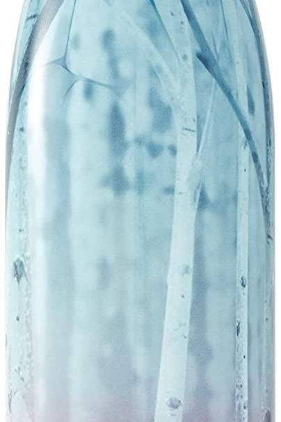 750 ml S'well Insulated Bottle - Frozen Quest
