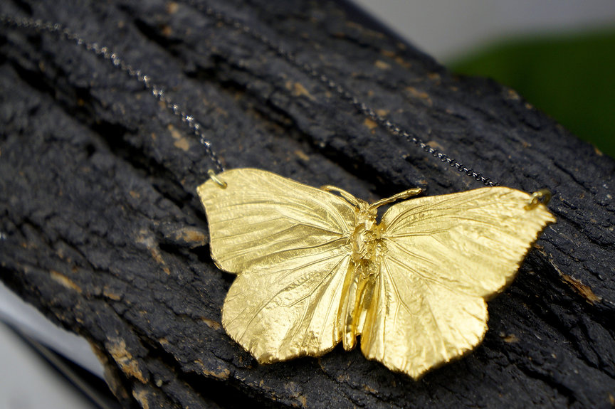 A butterfly found deceased and then got 18K goldplated in sterling silver 925.