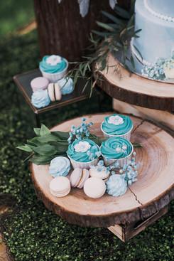 Blue Cupcake & Macarons
