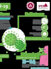 IPRT COVID-19 Infographic