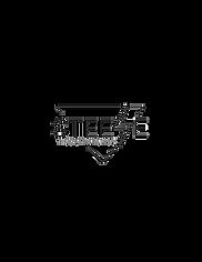 Steeze Marketing Logo