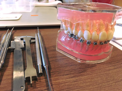 Hands-On Ortho