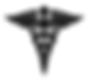 IAADent logo 2018.png