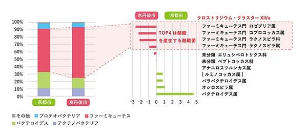 %E4%BA%AC%E4%B8%B9%E5%BE%8C%E5%B8%82_edi