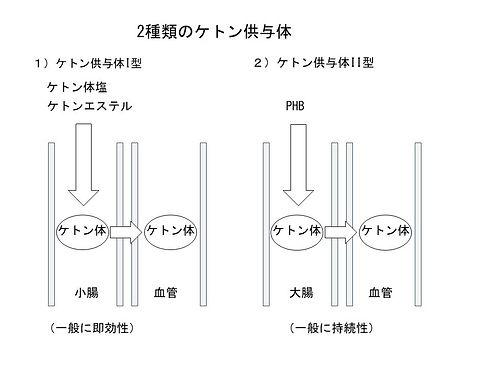 2種類のケトン供与体.jpg