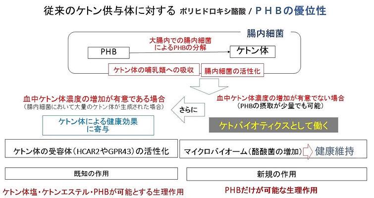 PHBの優位性.jpg