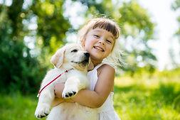 Little girl with a Golden retriever pupp