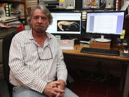 Miembro Emérito: Michel Edmond Hendrickx Reners