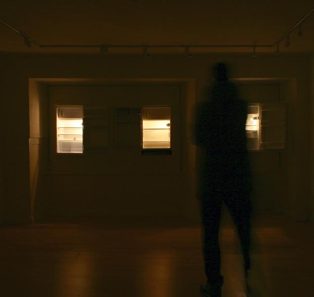 Frisch (2014)