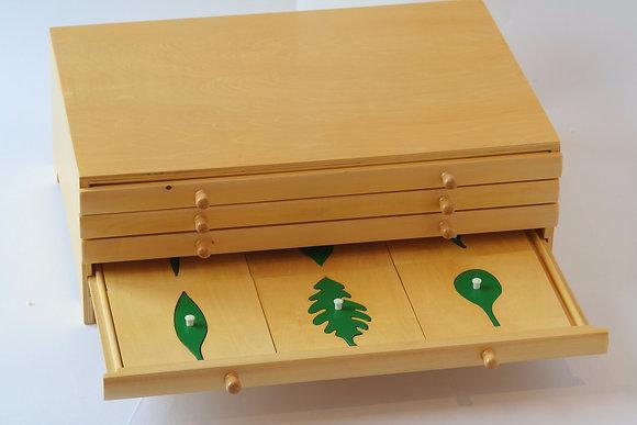 Botany Leaf Cabinet (24 insets)