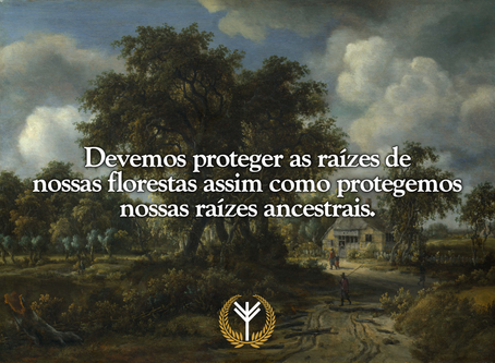As raízes de nossas florestas são tão importantes quanto nossas raízes ancestrais