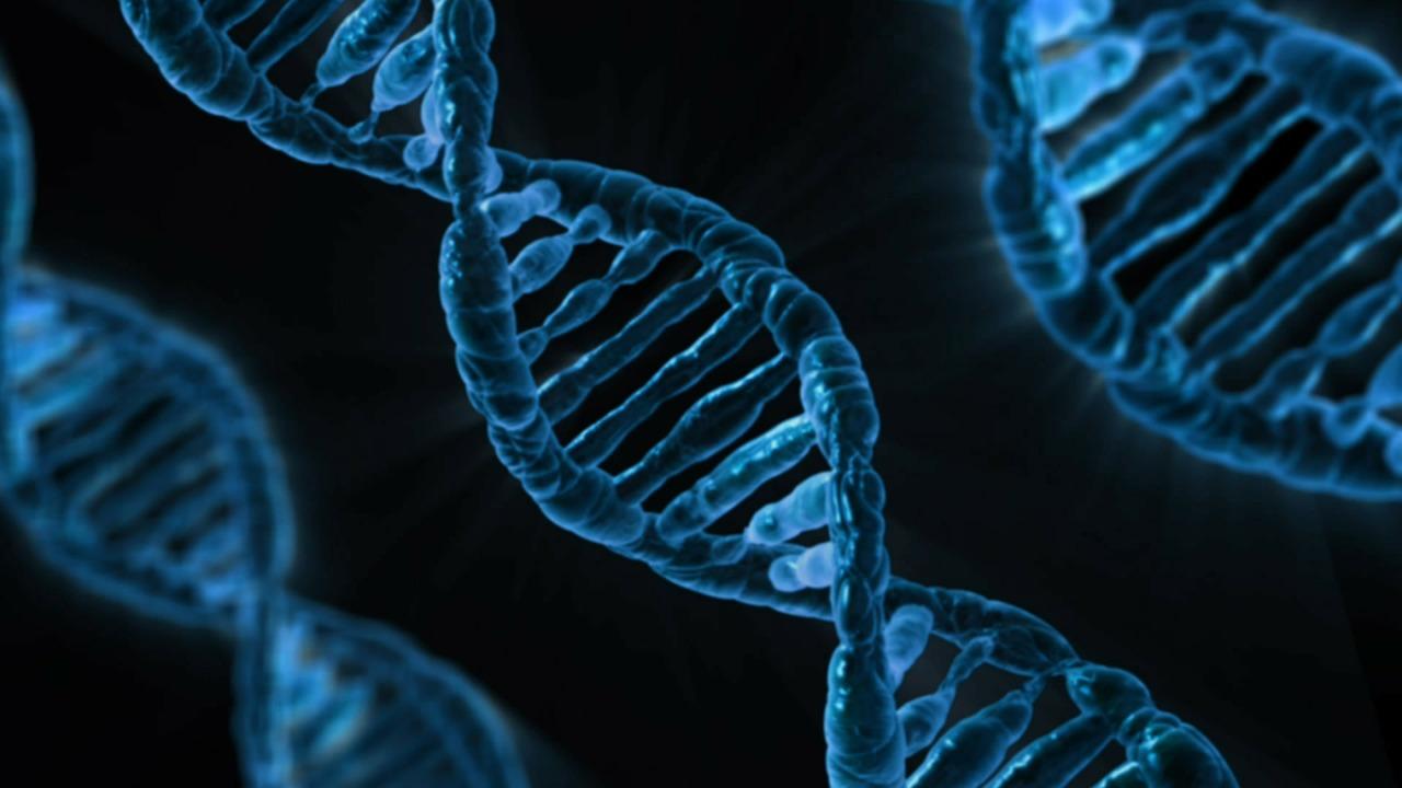 Ilustração do DNA - Teste de DNA