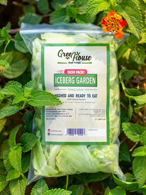 Iceberg Garden Dash Pack - خس كابوتشا مقطع حجم صغير
