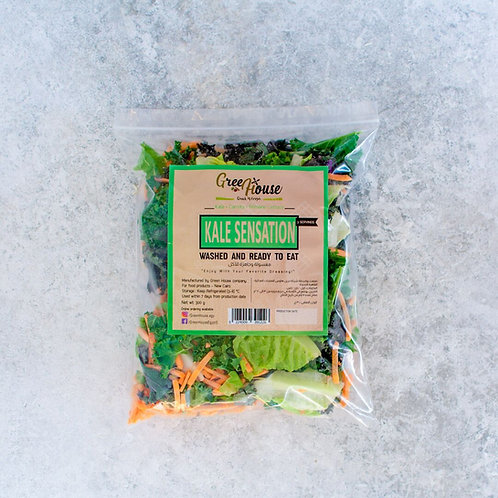 Kale Sensation - خلطة الكيل
