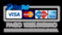 pago-paypal-seguro.png