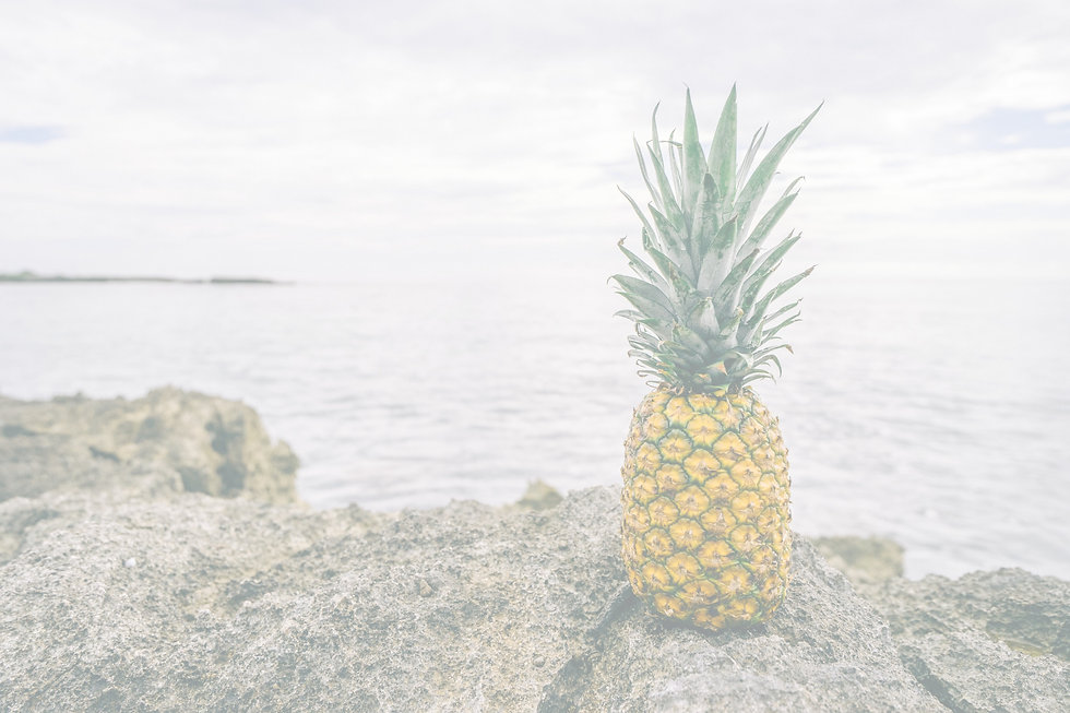 Pineapple%20by%20the%20Sea_edited.jpg
