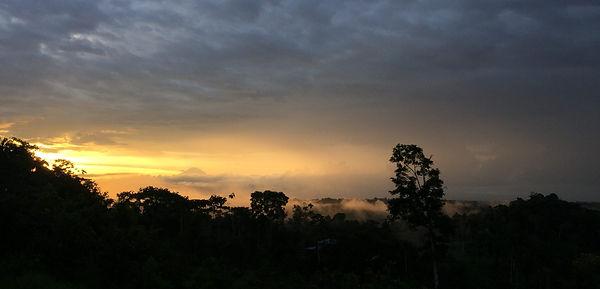 Rainforest-sunset-e1531497039543.jpg
