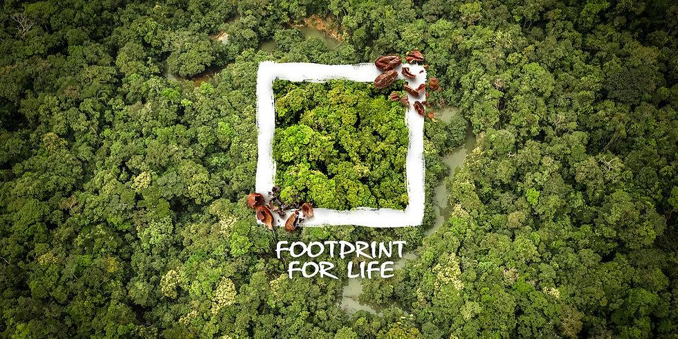 home-chocolate-footprint.jpg