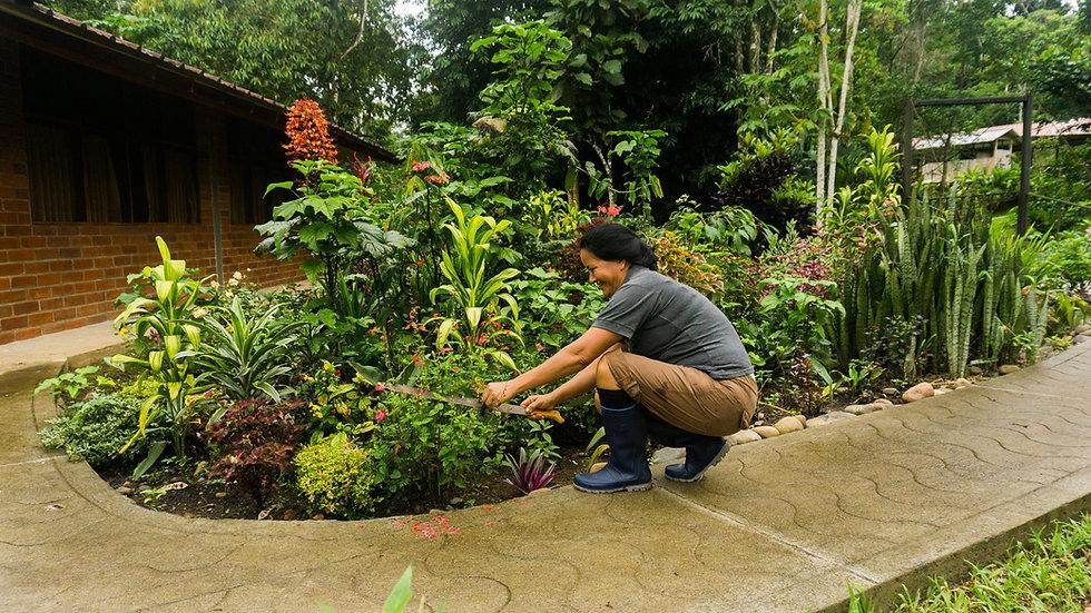 Yachana-Lodge-gardenroom.jpg