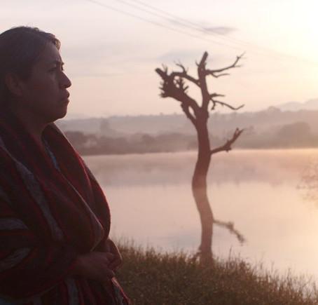 """""""Sin señas particulares"""": Una madre  enfrenta al narco para recuperar a su hijo"""