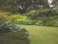 Garden Clearance & Disposal