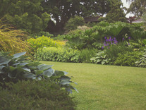 Weekend garden fun!