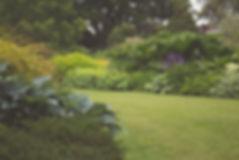 A stunning garden