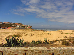 Wild sunny beaches