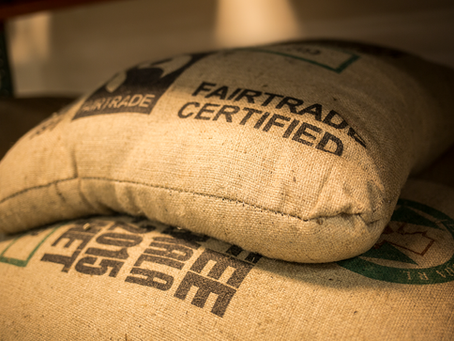 Certifications 101: An Introduction for Specialty Coffee Professionals