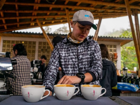 Will Travel For Coffee: Sustainability in Global Coffee Travel
