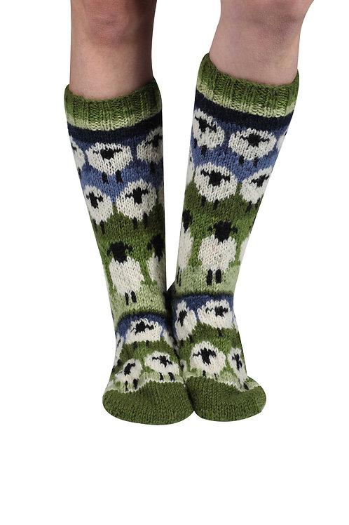 Flock of sheep long socks