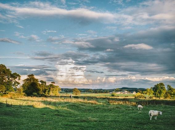 High House Farm View.jpeg