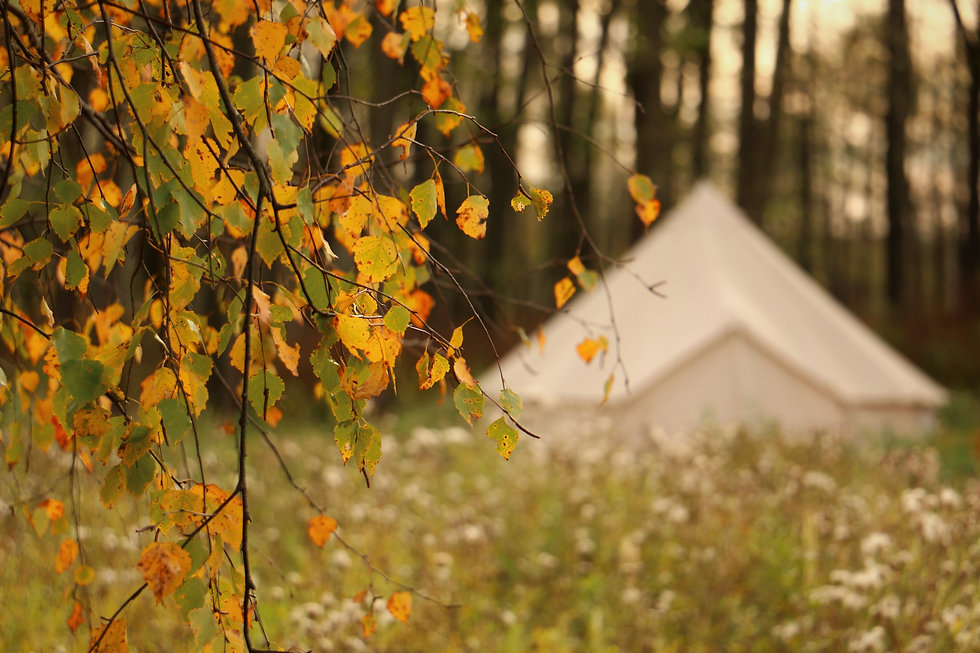 Glamping houses in autumn. Russian autum
