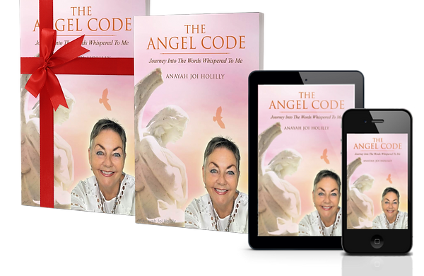 combo the angel code cover book, gift wr