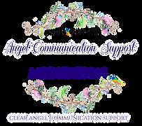 Angel Communication Support Meditation N