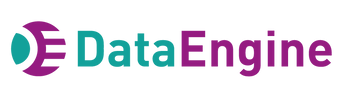 DataEngine---Logo---Png.png