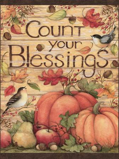 Count Your Blessings Fabric Panel - 100% Cotton fabric